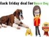 Black friday deal for boxer dog