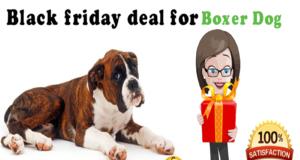 Black friday deal for boxer dog